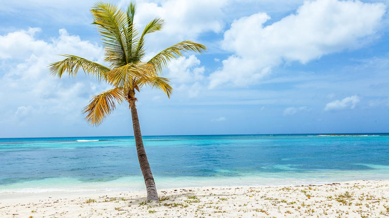 Tropical Island Beach Ambience Sound: 8 Of The Best Beaches In The Grenadines