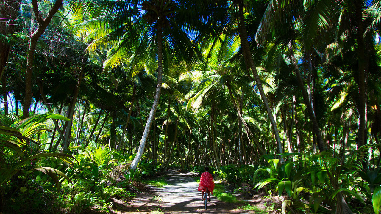 6 of the best luxury nature and eco resorts