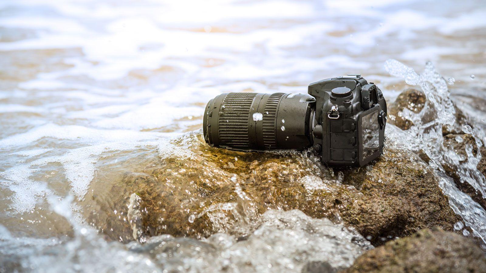Best Waterproof Cameras 2020: The Best New Cameras For Underwater Exploring