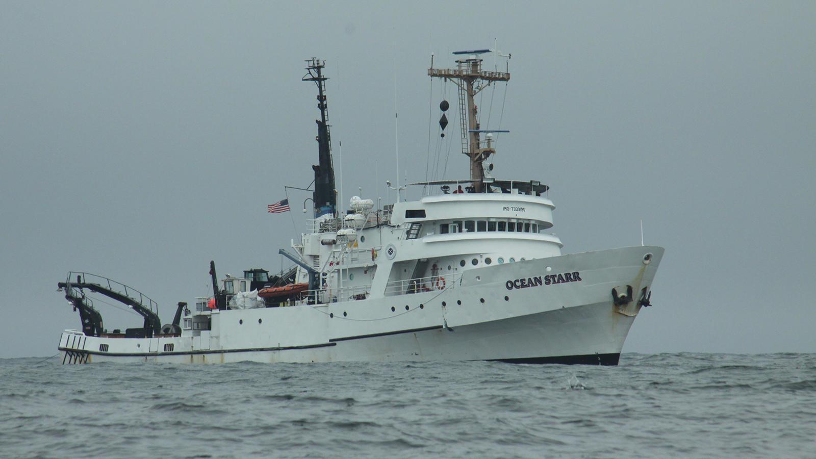 Ocean Starr - Fincantieri